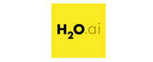 H2O Driverless AI reviews