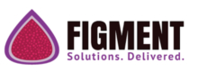 Figment POS  reviews