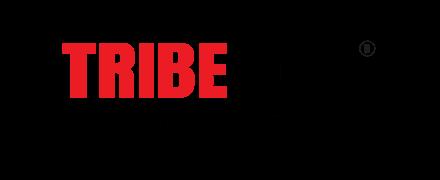 Tribe365 reviews