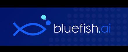 Bluefish.ai reviews